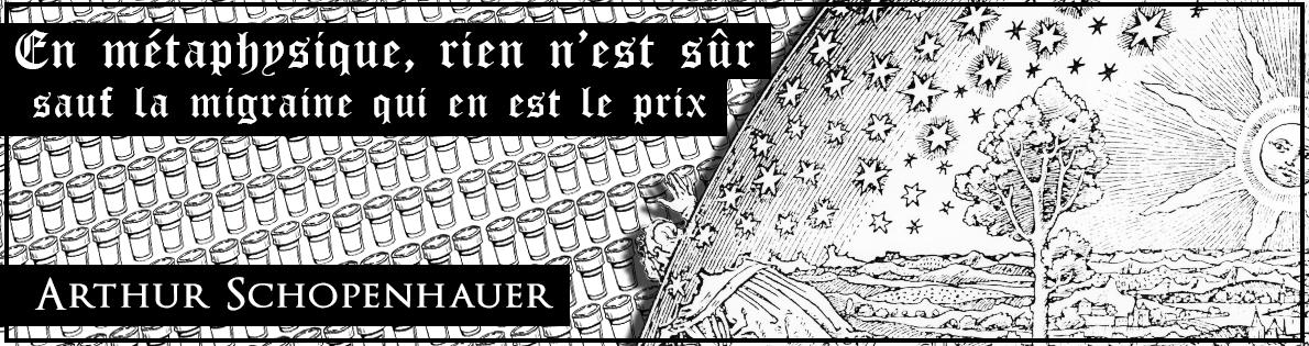 Bannière 3 : Arthur Schopenhauer
